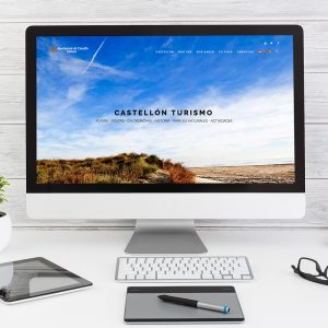 diseno web ayuntamiento castellon